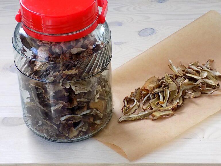 Najszybszy sposób na suszenie grzybów