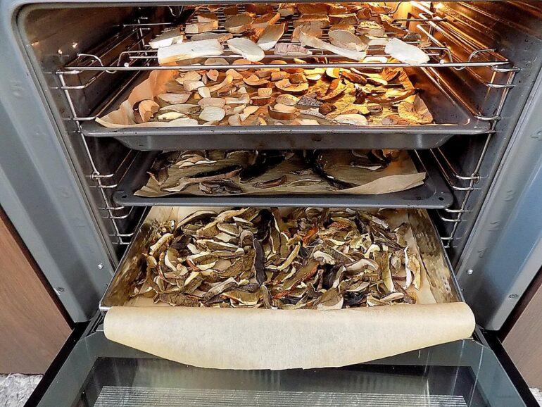 Najszybszy sposób na suszenie grzybów 4